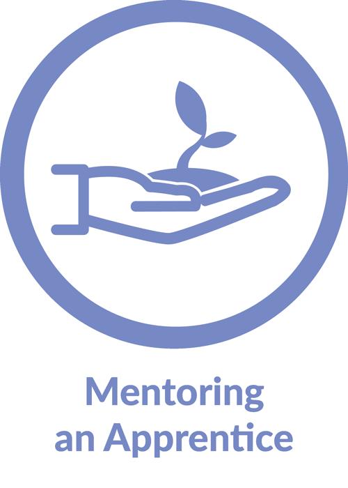 Mentoring an Apprentice