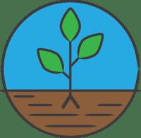 Plant - Step 3