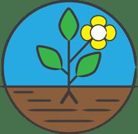 Plant - Step 4